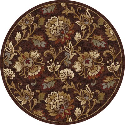 Gunnora Brown Area Rug Rug Size: Rectangle 53 x 73