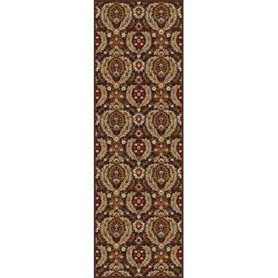 Barbarra Brown Area Rug Rug Size: Runner 27 x 73