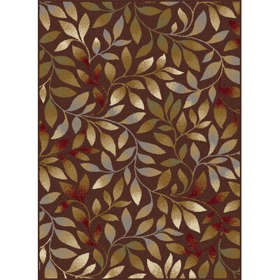 Geneva Brown Area Rug Rug Size: 5 x 7