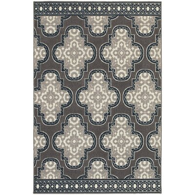Brookline Grey/Navy Indoor/Outdoor Area Rug Rug Size: Runner 110 x 76