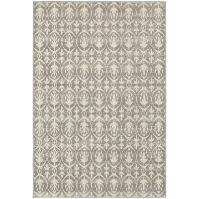 Brookline Grey/Ivory Indoor/Outdoor Area Rug Rug Size: 53 x 76