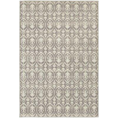 Brookline Grey/Ivory Indoor/Outdoor Area Rug Rug Size: 67 x 96
