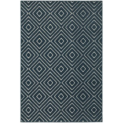 Brookline Navy/Ivory Indoor/Outdoor Area Rug Rug Size: Runner 11 x 76