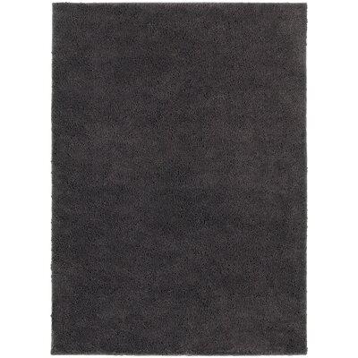 Hanson Grey Area Rug Rug Size: 53 x 73