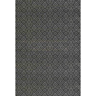 Durham Dark Gray Area Rug Rug Size: 53 x 73