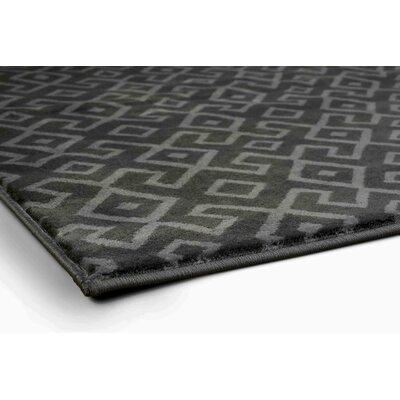 Durham Dark Gray Area Rug Rug Size: 710 x 106