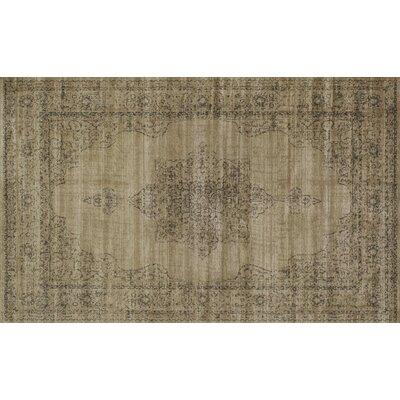 Benson Beige Area Rug Rug Size: 53 x 73