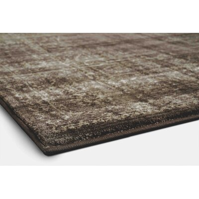 Benson Light Brown Area Rug Rug Size: 53 x 73