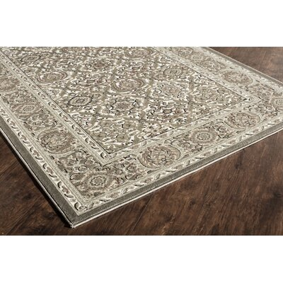 Sheldon Brown Area Rug Rug Size: Runner 22 x 8