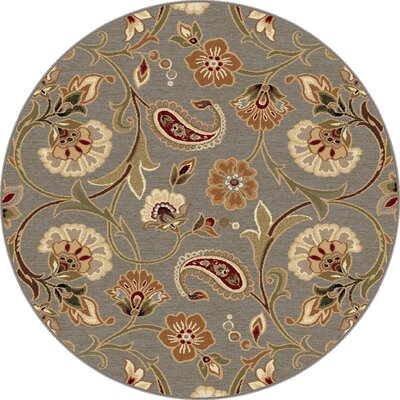 Barbarra Gray Area Rug Rug Size: Rectangle 53 x 73