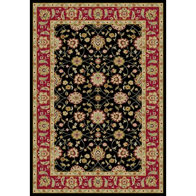 Ankara Zeigler Black Rug Rug Size: Rectangle 53 x 73