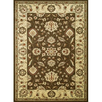 Chester Brown Oushak Area Rug Rug Size: 27 x 41