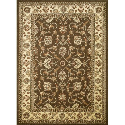 Chester Sultan Brown Rug Rug Size: 33 x 47