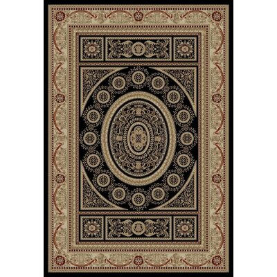 Jewel Aubusson Black Area Rug Rug Size: Rectangle 53 x 77