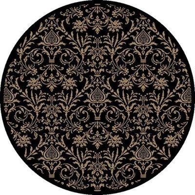 Jewel Damask Black Area Rug Rug Size: Round 53