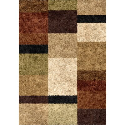Daniel Brown Area Rug Rug Size: 53 x 76