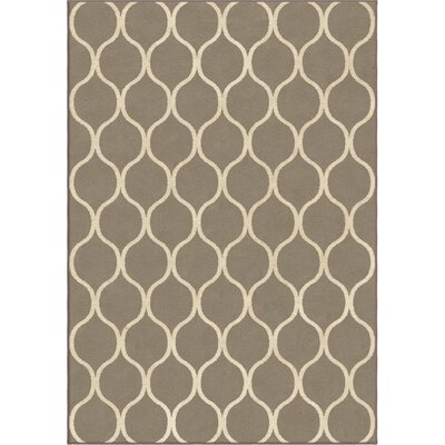 Ogden Gray Area Rug Rug Size: 53 x 76