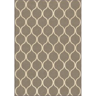 Ogden Gray Area Rug Rug Size: Rectangle 53 x 76