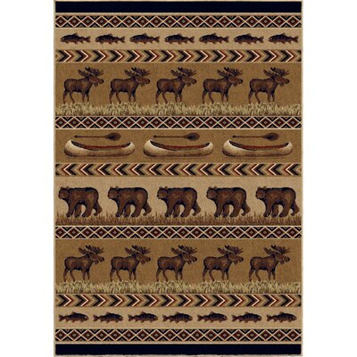 Judith Brown Area Rug Rug Size: 53 x 76