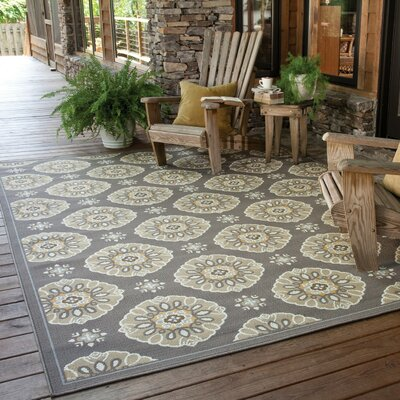 Milltown Grey/Gold Indoor/Outdoor Area Rug Rug Size: 67 x 96