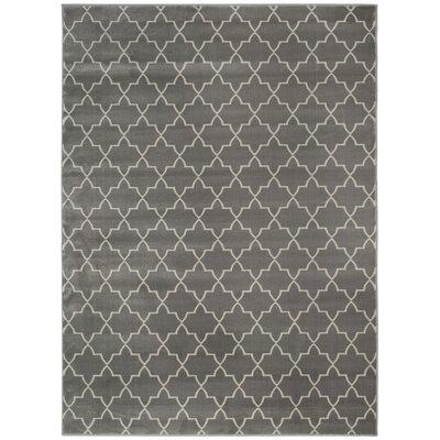 Gray Area Rug Rug Size: 710 x 106