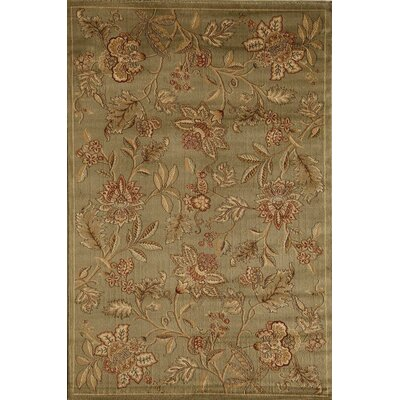 Allston Green Area Rug Rug Size: Runner 23 x 710