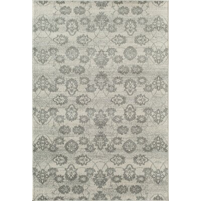 Grady Stone Gray/Ivory Indoor/Outdoor Area Rug Rug Size: Runner 23 x 710