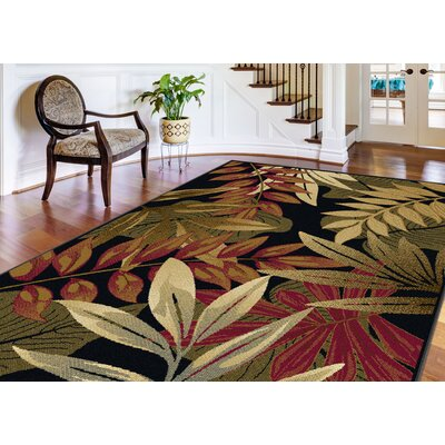 Yearsley Black Area Rug Rug Size: Rectangle 5 x 7
