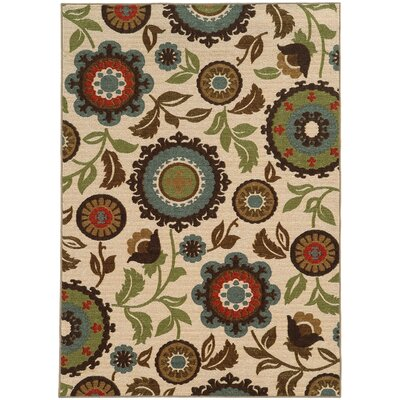Roger Ivory Area Rug Rug Size: Rectangle 53 x 73