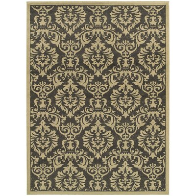 Acropolis Charcoal/Ivory Area Rug Rug Size: Rectangle 53 x 73