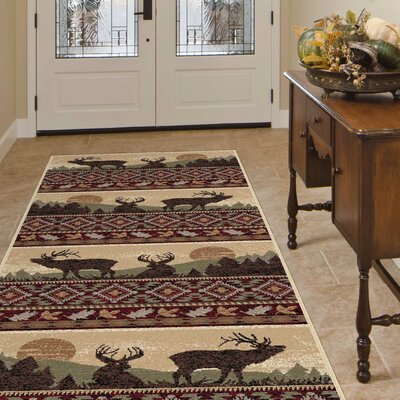Alers Red/Brown Area Rug Rug Size: Rectangle 8 x 11