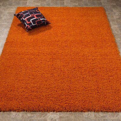 Batavia Orange Area Rug Rug Size: Rectangle 5 x 7