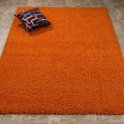 Batavia Orange Area Rug Rug Size: Rectangle 33 x 47