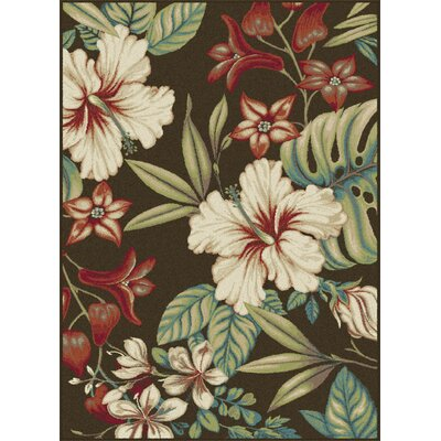 Murphy Brown Area Rug Rug Size: Rectangle 53 x 73