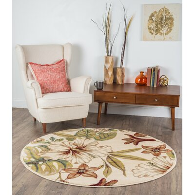 Murphy Ivory Area Rug Rug Size: Rectangle 53 x 73