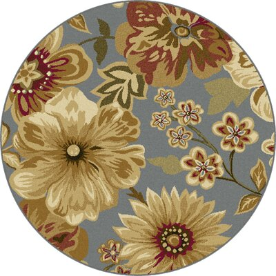 Colesville Blue Area Rug Rug Size: Round 53