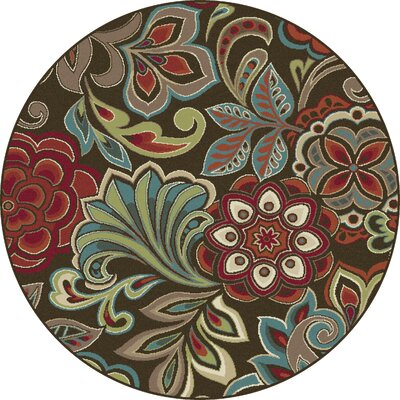 Brightling Brown Area Rug Rug Size: Round 710