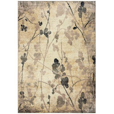 Evangeline Beige Area Rug Rug Size: Rectangle 92 x 126