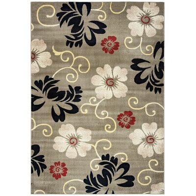 Culver Area Rug Rug Size: Rectangle 93 x 126