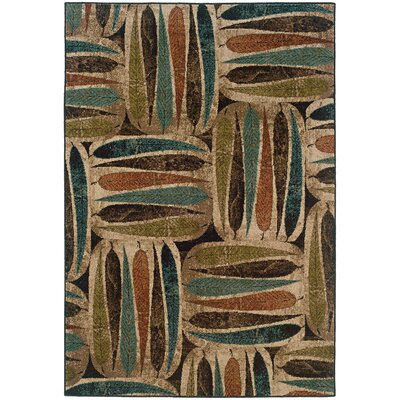 Bienville Brown/Green Area Rug Rug Size: Rectangle 5 x 76