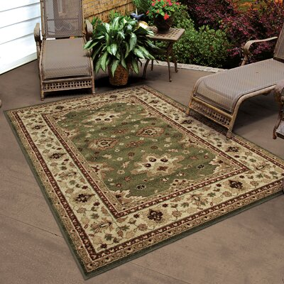 Montrose Green Indoor/Outdoor Area Rug Rug Size: Rectangle 52 x 76
