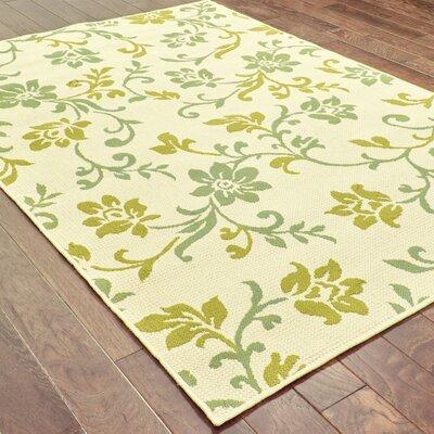 Newfield Ivory/Green Indoor/Outdoor Area Rug Rug Size: 25 x 45