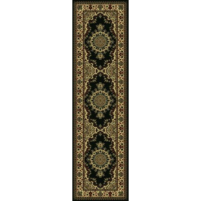 Northington Black Area Rug Rug Size: Runner 22 x 77
