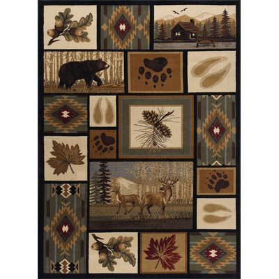 Haddam Brown/Beige Area Rug Rug Size: Rectangle 5 x 8