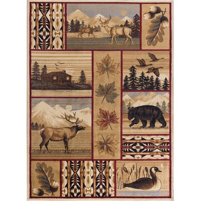 Littlefield Brown/Beige Area Rug Rug Size: Rectangle 5 x 8