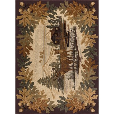 Meyers Brown/Beige Area Rug Rug Size: Rectangle 5 x 8