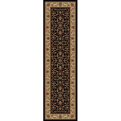 Colebrook Black Area Rug Rug Size: Runner 22 x 77