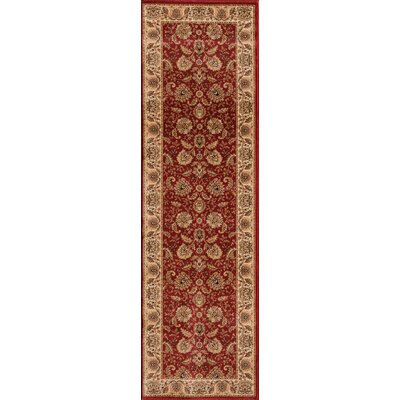 Dexter Red Area Rug Rug Size: Rectangle 53 x 77