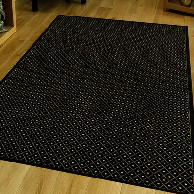 Colebrook Black Area Rug Rug Size: Rectangle 33 x 411
