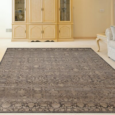 Benson Light Brown Area Rug Rug Size: Runner 22 x 77